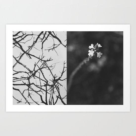 Opposites Art Print
