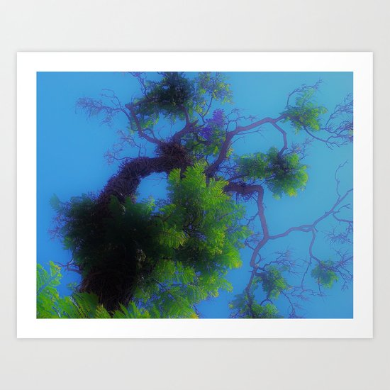 Trees in Heaven Art Print