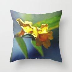 Supra // Chromatic Throw Pillow