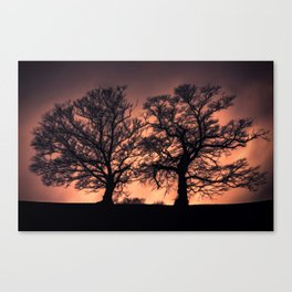Ethereal Trees  Canvas Print