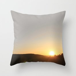 We Are Not Throw Pillow