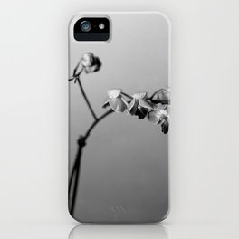 Disgruntled Orchid iPhone Case
