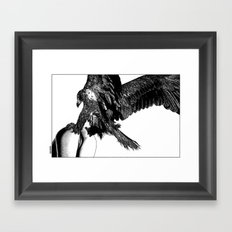 asc 636 - La fauconnière (Bird of prey) Framed Art Print