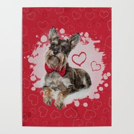 Cute Schnauzer on Hearts Pattern Poster