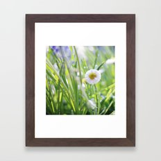 sunny summer meadow Framed Art Print