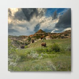 Theodore Roosevelt National Park,ND 3 Metal Print