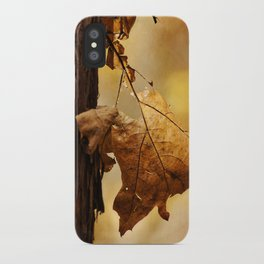 The Parting of Ways iPhone Case