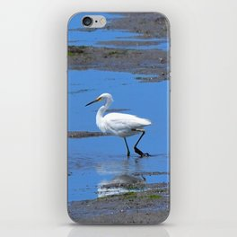 egret in brown and blue iPhone Skin
