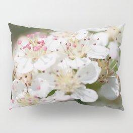 Aronia Blossoms Pillow Sham