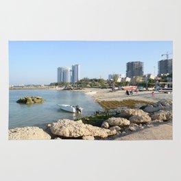 Coral Beach Park Rug