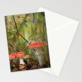 Toadstools like in a fairytale Stationery Cards