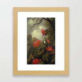 Hummingbird and Passionflowers by Martin Johnson Heade, 1875 Framed Art Print
