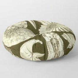 Naturalist Ammonites Floor Pillow