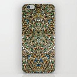 Hidden Beauty No:1 iPhone Skin