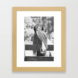 I am Watching You in BW Framed Art Print