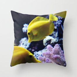 Under the Sea Swimming Yellow Fish Coral Reef Sea Anemone Underwater Photography Wall Art Print Throw Pillow