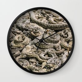 A literal pit of vipers at the Worlds Largest Rattlesnake Roundup in Sweetwater Texas Wall Clock