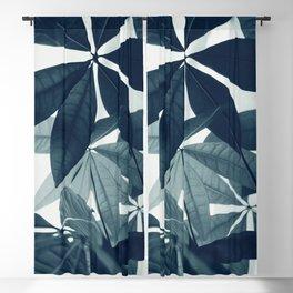 Pachira Aquatica #4 #foliage #decor #art #society6 Blackout Curtain