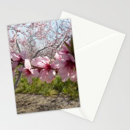 Branch of Blossoms Stationery Cards