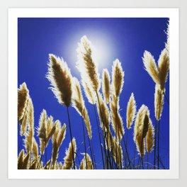 Backlit Blue Art Print