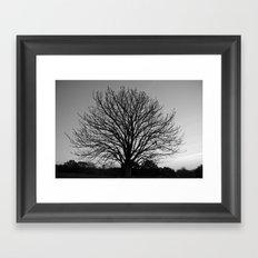 richmond park- b-w Framed Art Print