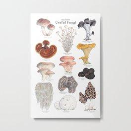 Useful Fungi Metal Print