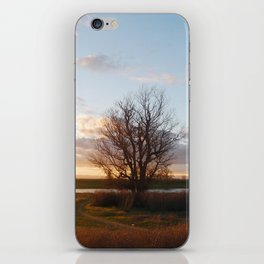 IT IS THE EVENING OF THE DAY iPhone Skin