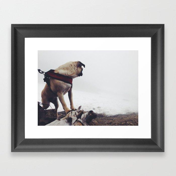 Mt. Summiting Pug Pup Framed Art Print