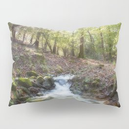Enchanted Stream Pillow Sham