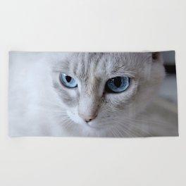 Cat Blue Eyes Beach Towel