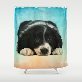 Border Collie Puppy Shower Curtain