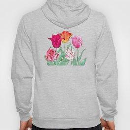 Tulips garden Hoody