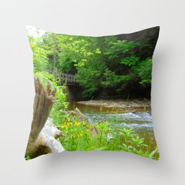 Creekside Throw Pillow