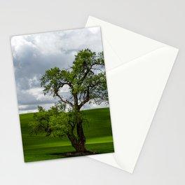 Single Tree in Green Field Stationery Cards