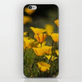 Springtime Poppies iPhone Skin