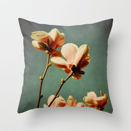 when there was spring Throw Pillow