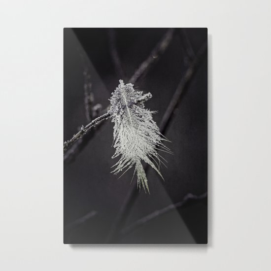 frosted feathers Metal Print