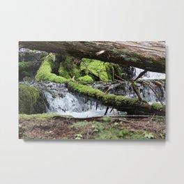 Cascades 646 Pacific Northwest Waterfall Metal Print