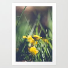 Yellow Flower in Green Grass Art Print