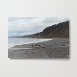 California Coast I - Agate Beach Metal Print