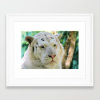 apollo Framed Art Prints featuring Apollo... by Lisa Argyropoulos