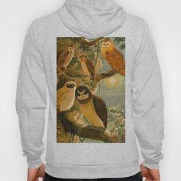Album de aves amazonicas - Emil August Göldi - 1900 Amazon Animals Exotic Owls Hoody