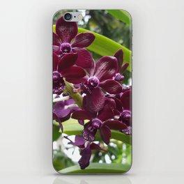 Deep Purple iPhone Skin
