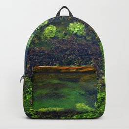 Giant Springs - Great Falls, Montana Backpack
