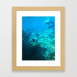 Under SeaWorld Framed Art Print