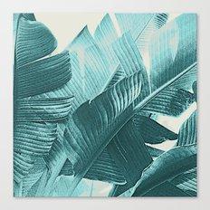 Banana Palm Canvas Print