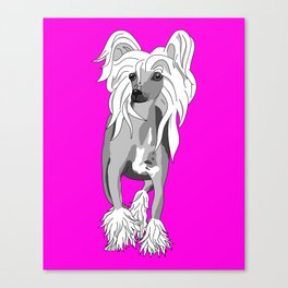Sassy Chinese Crested Canvas Print