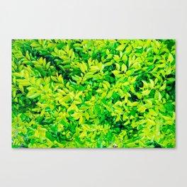 hojas verdes Canvas Print