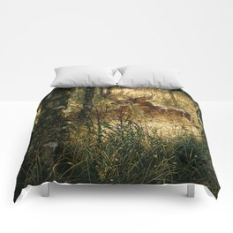 Whitetail Deer - A Golden Moment Comforters