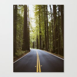 Road worthy Canvas Print